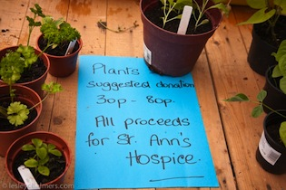 "Note saying ""Plants Suggested Donation 30p-80p."""